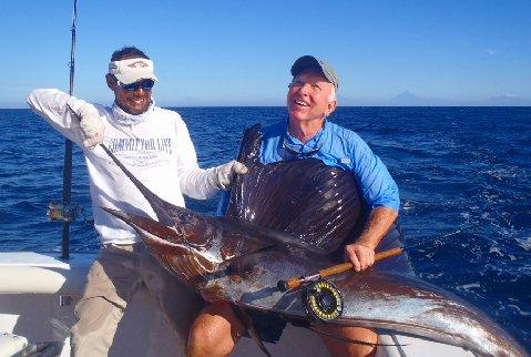 Paul Lombardi Sailfish on Fly January 2014 First Sailfish School catch