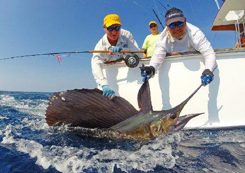 Eric Hirschhorn first Sailfish on Fly aboard Intensity March 10 2014 The Sailfish School