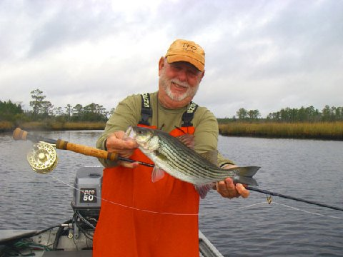 NC Striper on Fly