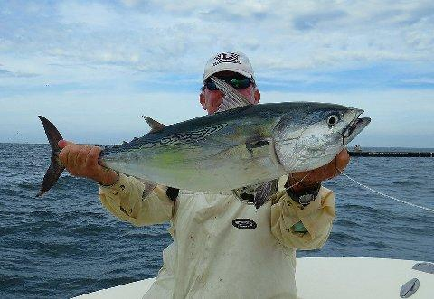 Don Butler releasing 20# Albacore October 29 2014