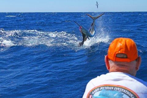 Action Shot Sailfish on Fly January 17 2014 Intensity Captain Mike Sheeder Jake Jordan Angler
