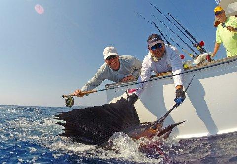 Chris Weatherley, Sailfish on Fly March 11, 2014 Makaira with Captain Jason Brice The Sailfish School