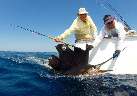Johm Killian first Sailfish on fly The Sailfish School March 13 2014 vessel Makaira with captain Jason Brice
