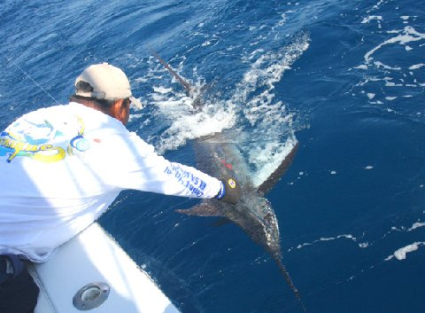 Tom Gilmore First Blue Marlin