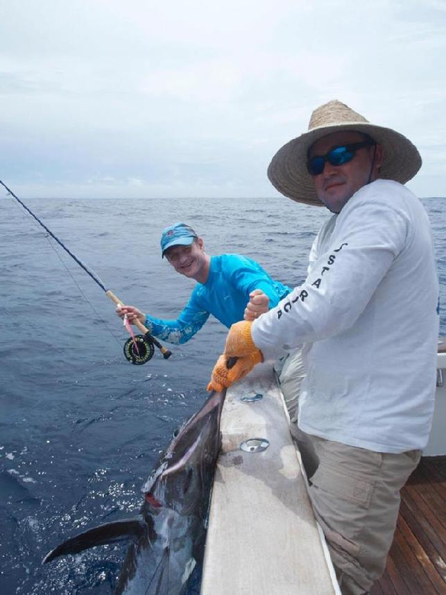 Jari Releasing first Blue Marlin on Fly July 2016