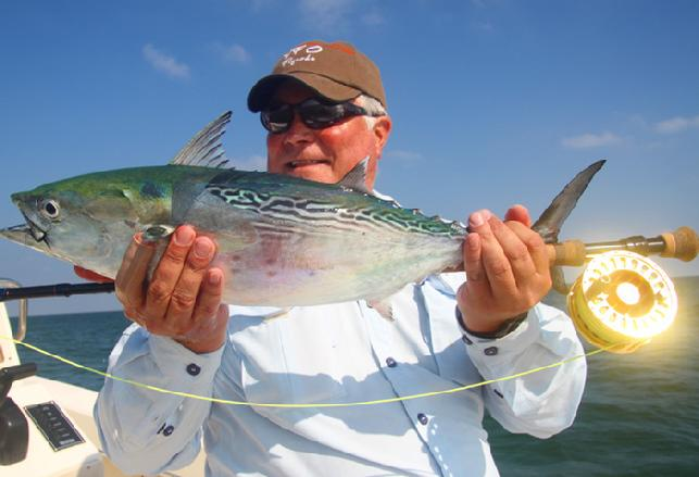 "Rick's first NC Albie on fly caught aboard ""Fly Reel"" with Captain Jake Jordan"
