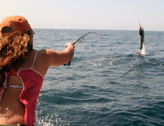 Dusty Byrd Sailfish school jumping sailfish on fly