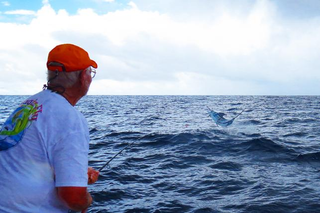 George Maybee fight his fifth Blue marlin on fly, vessel Dragin Fly, The Costa Rica Blue Marlin Fly Fishing School, August 2016